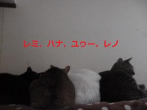 2017_01_24_010_2